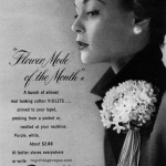 Flower Modes LTD 1950 - Jean Patchett